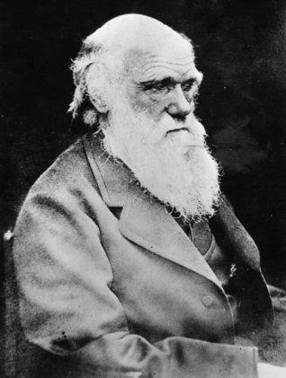 Darwin och hans teorier