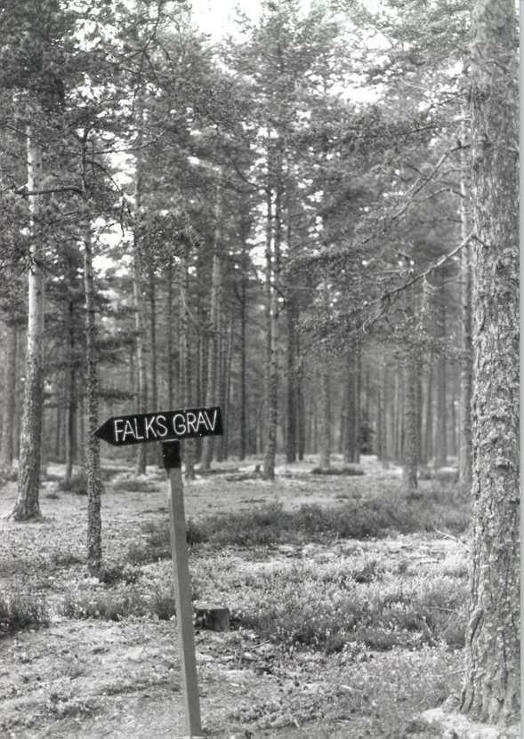 Falks grav