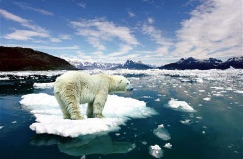 Klimatforskare ger upp hoppet